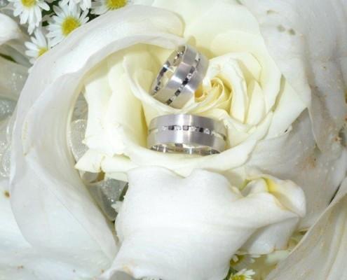 Ringe in Blume