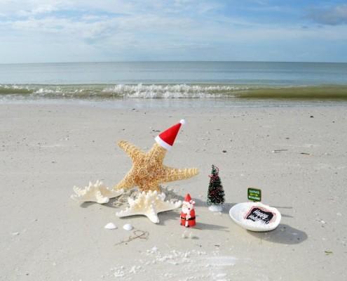 Seestern mit Nikolausmütze am Strand