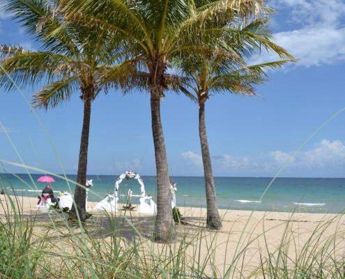 Palmen Strand heiraten