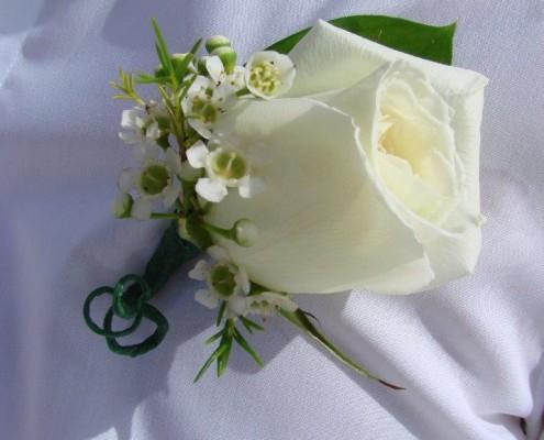 Ansteckblume weiße Rose für Bräutigam