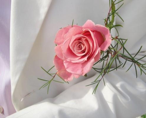 Ansteckblume Rose Bräutigam