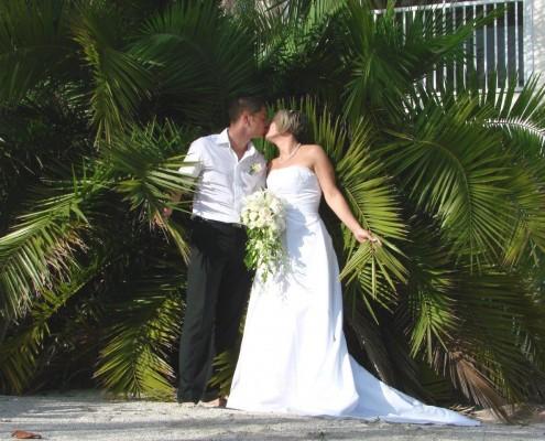 Hochzeit Palmen