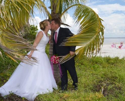 Palmen Hochzeit