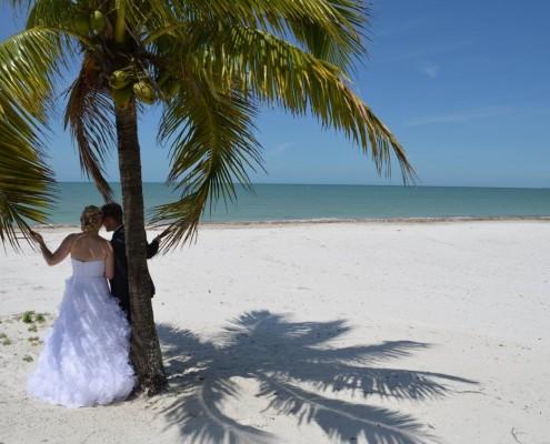 Palmen und heiraten