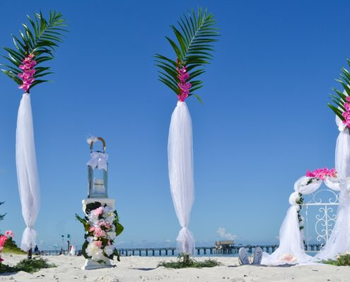 Tropical Wedding Planner Palmen