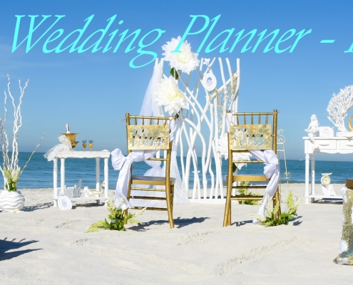 Tropical Wedding Planner Florida